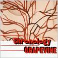 single compilation「Chronology」